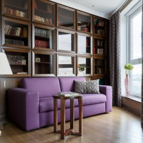 Раскладной диван возле книжных шкафов