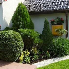 Клумба из хвойных растений перед стеной дома