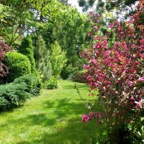 Укромный уголок сада в ландшафтном стиле