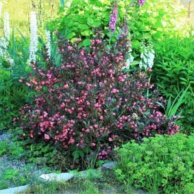 Фото садовой клумбы в природном стиле