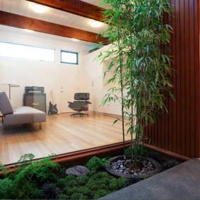 Зимний сад в интерьере квартиры