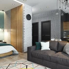 гостиная и спальня в одной комнате дизайн фото