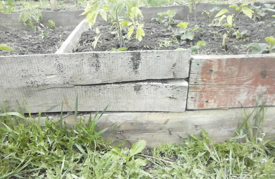 Старые доски на бортике высокой деревянной грядки