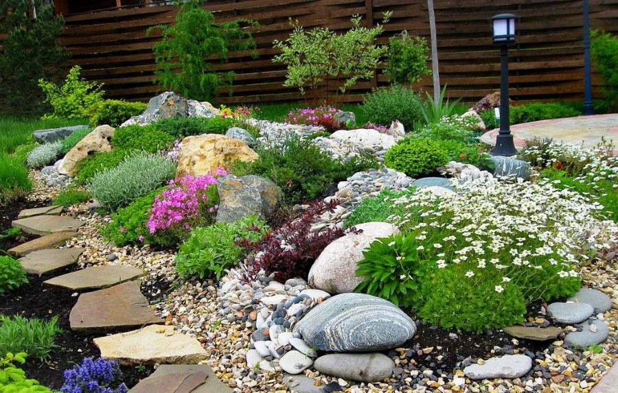 Цветущие многолетние растения на клумбе с камнями