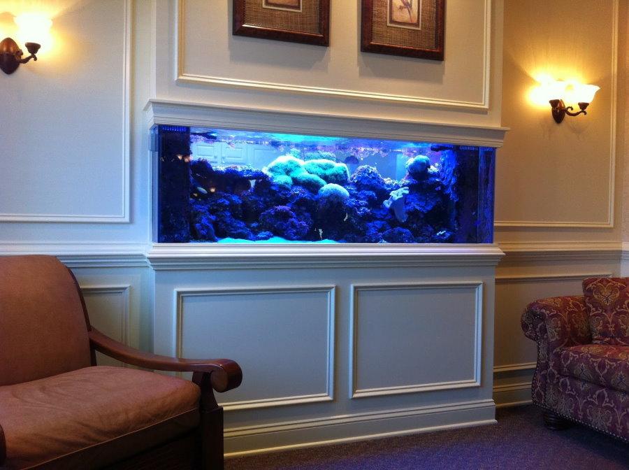 Гостиная комната с аквариумом в нише