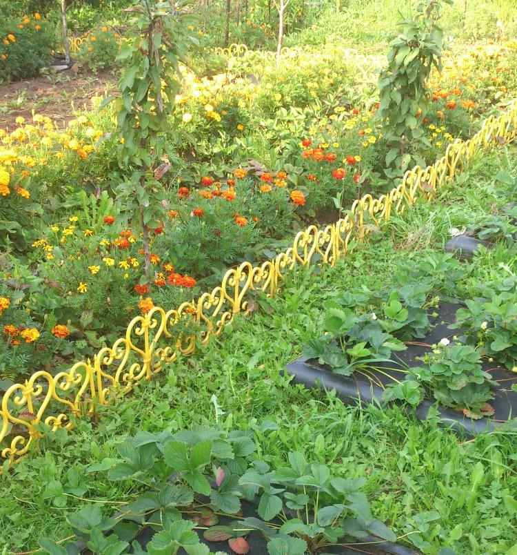 Ажурное ограждение из пластика в частном саду