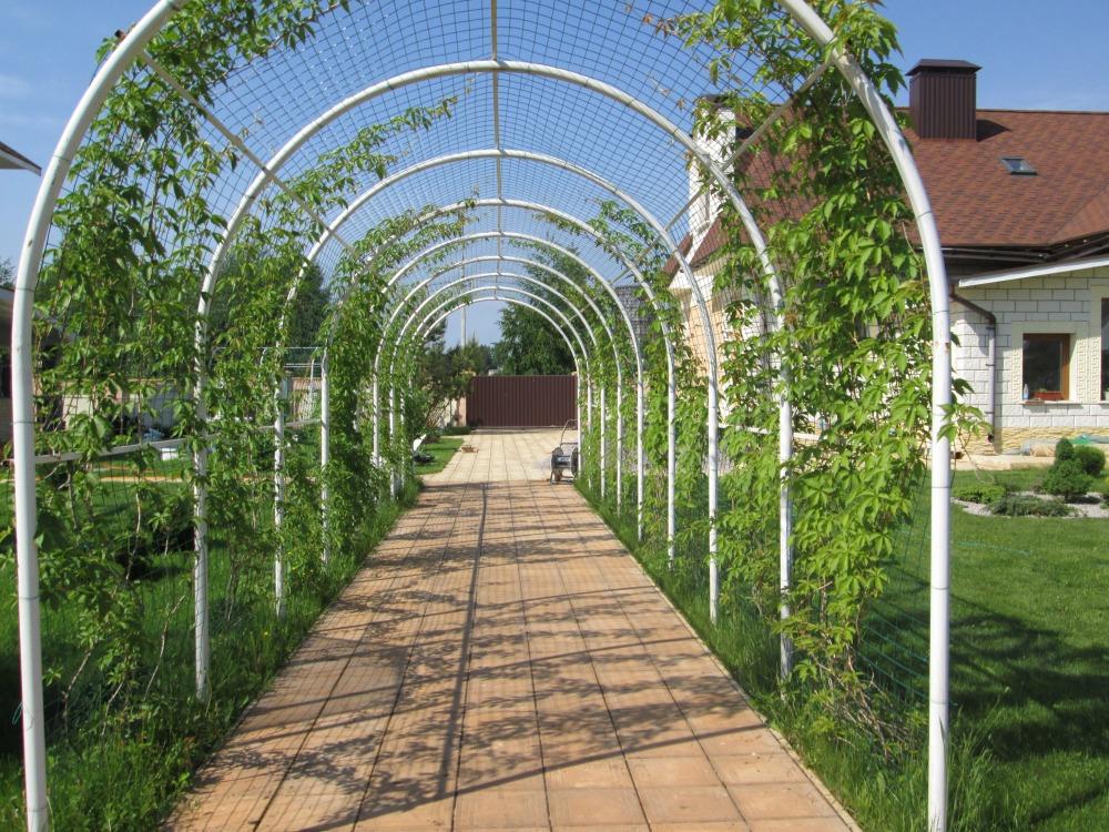 Самодельная арка для винограда из ПВХ труб