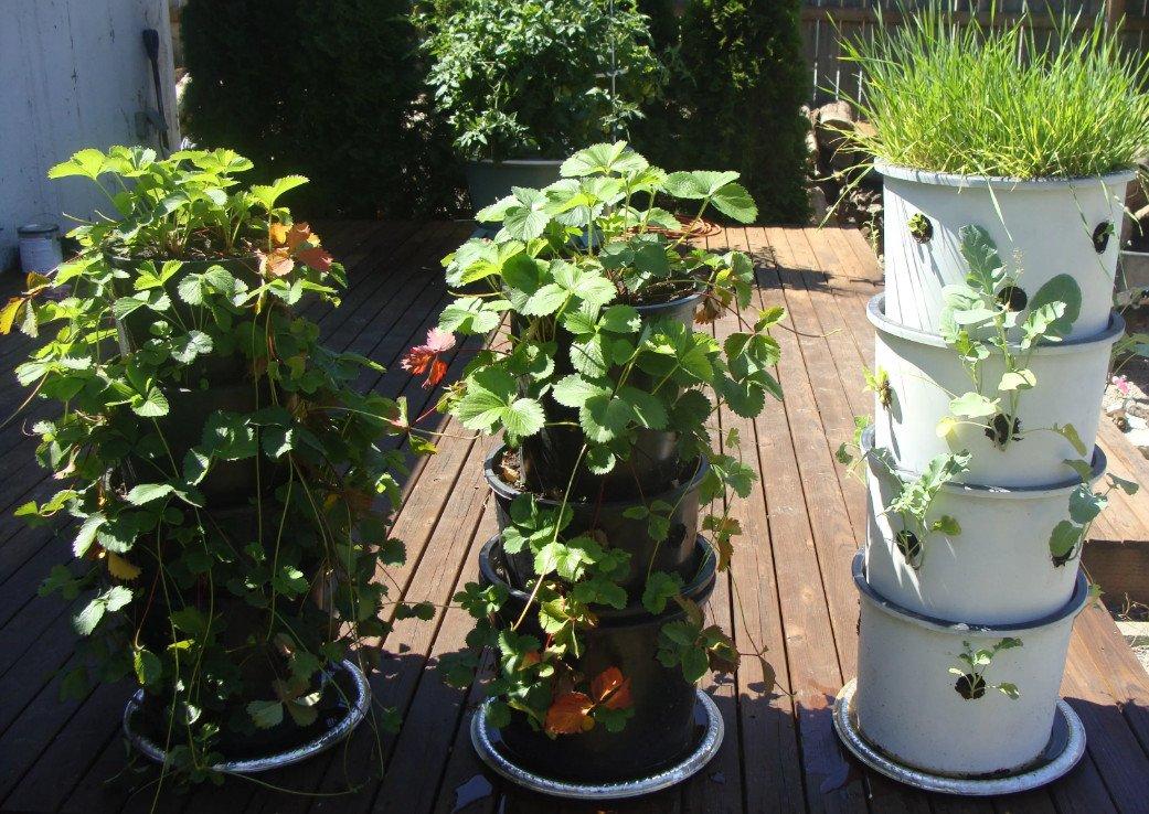 декор маленького сада