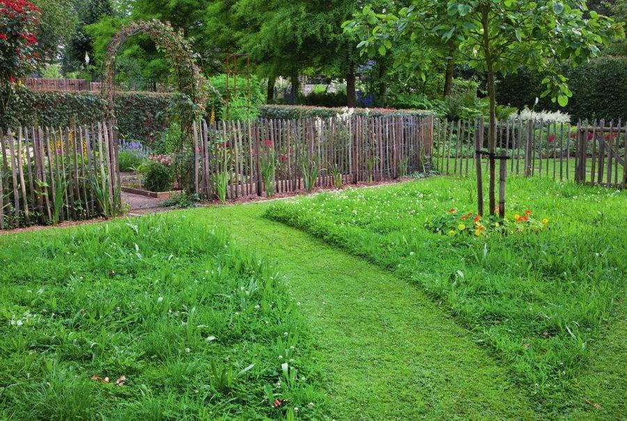 Садовый участок с дорожкой из травы