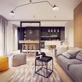 Дизайн современной квартиры с одной комнатой