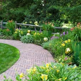 Желтые цветы вдоль садовой дорожки