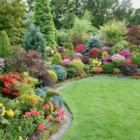 Разноцветные кустарники на загородном участке