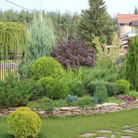 Каменный бордюр перед хвойными растениями