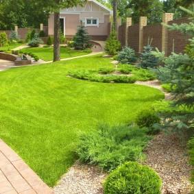 Зеленый газон неправильной формы