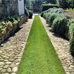 Длинная дорожка на даче с травянистым покрытием