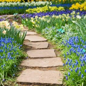 Клумбы с ранними цветами по краям дорожки в саду