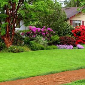 Зеленый газон в английском стиле