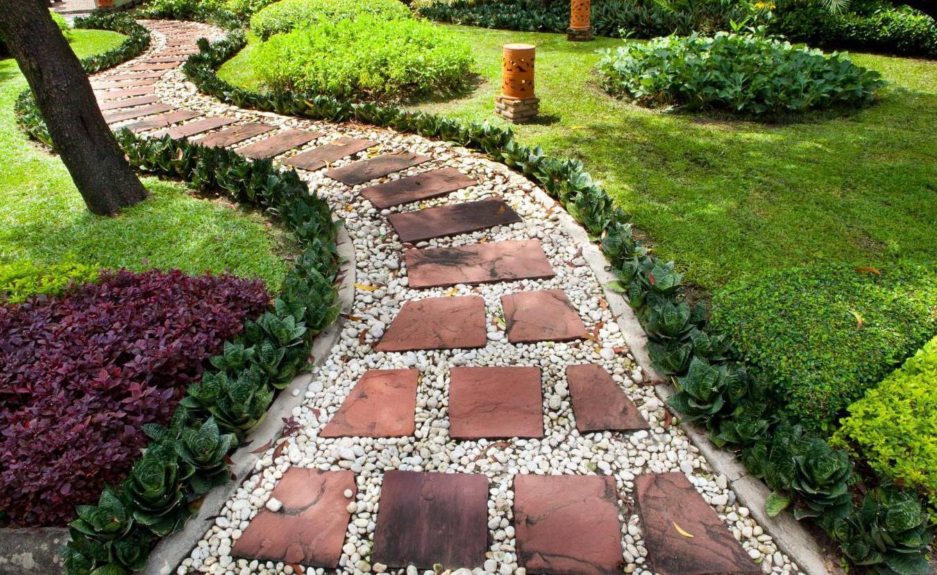 Луковицы садовых цветов фото и названия заболевание голубей