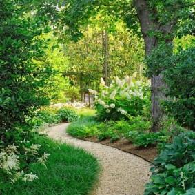 Уголок сада в ландшафтном стиле с извилистой тропинкой