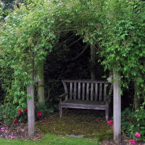 Заросшая пергола с деревянной скамейкой