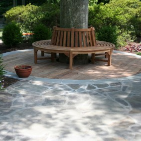 Круглая скамейка вокруг старого дерева