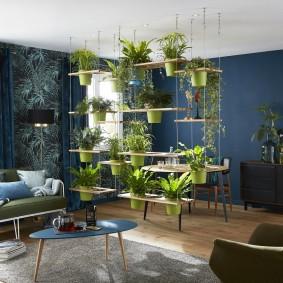 Стеллаж с живыми растениями в квартире