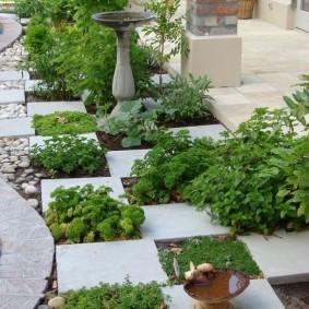 Модульная клумба в саду современного стиля