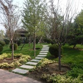 Дорожка через садовый участок с декоративными деревьями