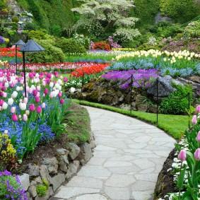 Дорожка из камня среди цветущих клумб