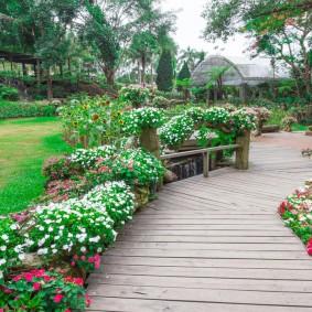Цветущие петунии по сторонам деревянной дорожки