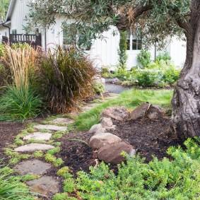 Пошаговая тропинка через старый сад