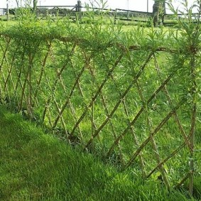Садовый забор из ивы с зелеными листьями