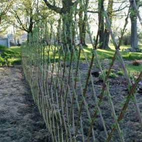 Плетение ромбом живой стенки из ивы