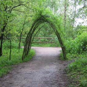 Арочный туннель из быстрорастущих растений