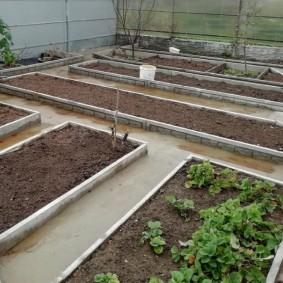 Деревянные бортики на овощных грядках