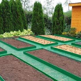 Зеленые тропинки между грядками на огороде