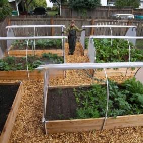 Удобные грядки для ленивых огородников