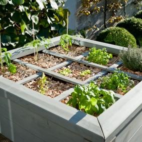 Мини-огород с приподнятыми грядками