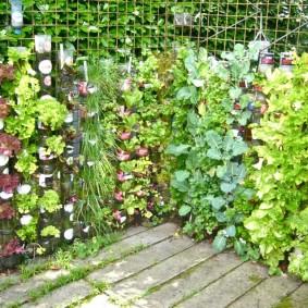 Вертикальный огород на маленьком участке