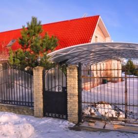 Высокая сосна на участке с одноэтажным домом