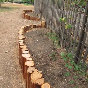 Узкая грядка из тонких деревьев