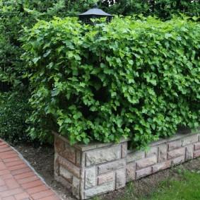 Садовый бордюр с отделкой искусственным камнем