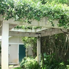 Деревянная пергола на загородном участке