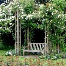 Деревянная скамейка в тени плетистого жасмина
