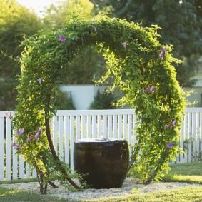 Овальная арка с вьющимися растениями