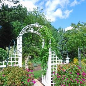 Садовый заборчик белого цвета