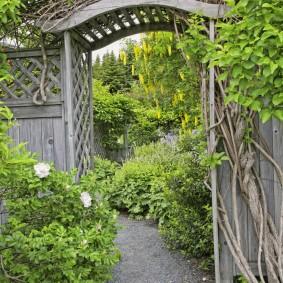 Старая арка в заброшенном саду