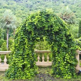 Садовая арка на террасе загородного дома