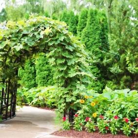 Ландшафтный дизайн сада в смешанном стиле