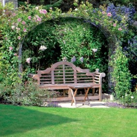 Деревянная скамейка под аркой с вьюнами